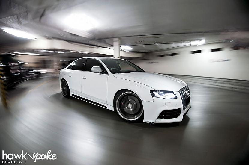 Autors: Aurelius Audi faniem #3