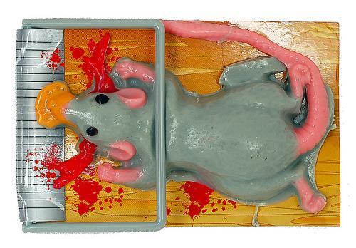 Gumijas beigta pele Kā... Autors: Greyshadow Top 10 lietas, kas veidotas no gumijas.