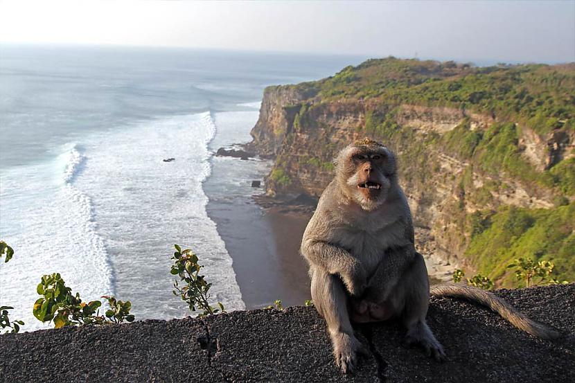 4 Skats no quotUluwatuquot... Autors: Persija Indonēzijas sala - Bali