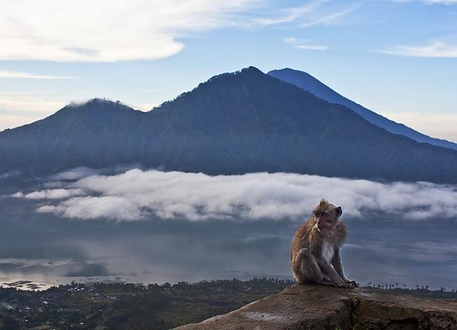 6nbspKā jau iepriekscaron... Autors: Persija Indonēzijas sala - Bali