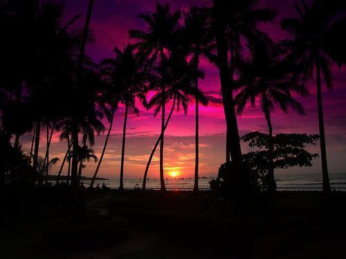 Autors: 50STM paradise.