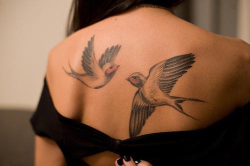 Autors: VectorX tattooed Women X