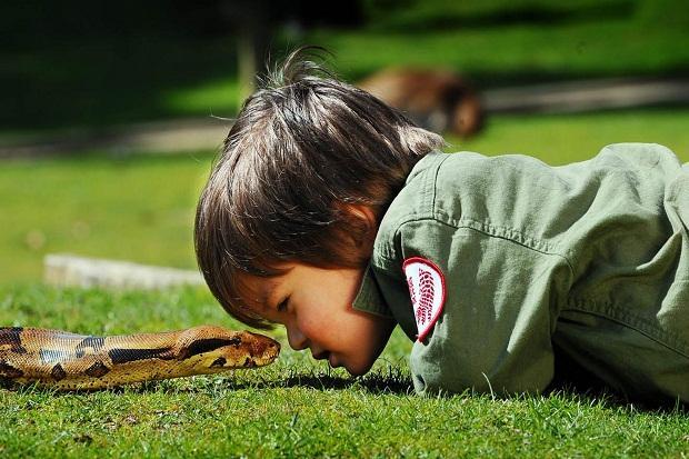 Mazulis vēlbūdams autiņos bez... Autors: R1DZ1N1EKS Pats jaunākais čūsku savaldītājs.
