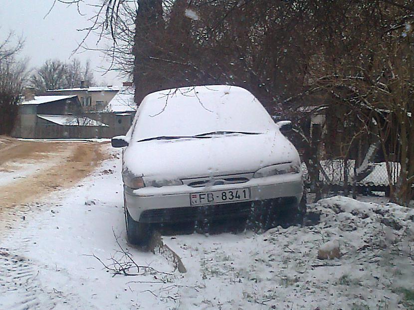 Autors: opuss Parking in Dobele