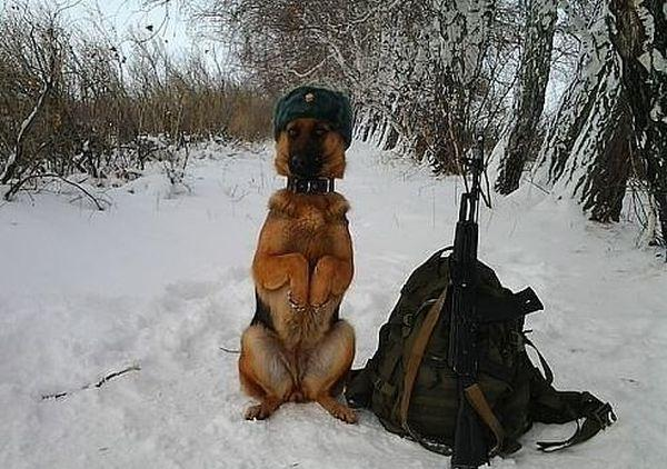 Autors: Nūja Only in Russia