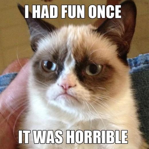 Vai Grumpy Cat ir īsts nbsp... Autors: Sandra Bl 4.aprīļa jubilārs!