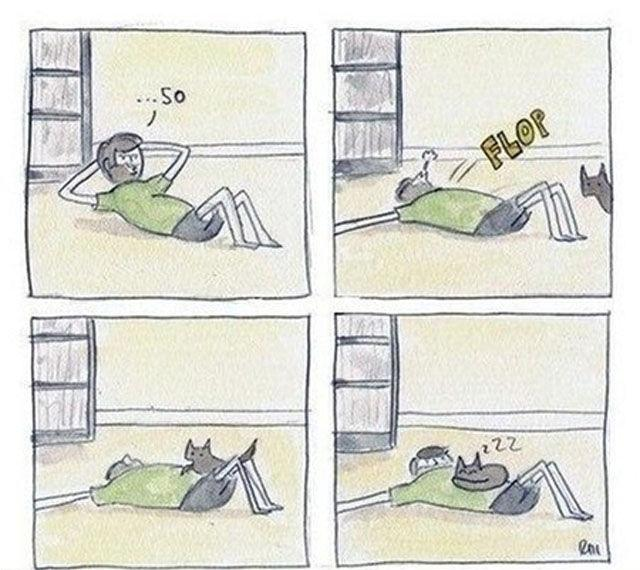 Autors: elv1js Iedod šodien sunim kaķa vārdu - Muris