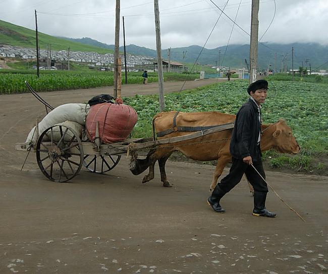 Pa scarontruntīgajiem grants... Autors: Raziels Ziemeļkoreja, kāda tā ir