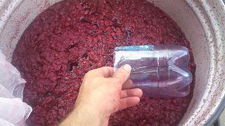 Tad ņemam kādu tīru trauciņu... Autors: laimins76 Taisam vīnu no skābiem ķiršiem.