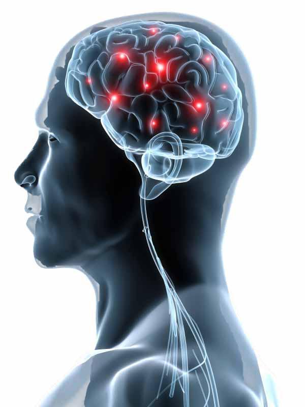 Smadzenes izmanto ap 20 no... Autors: Aurelius Kā rodas «bezfilma» un citi fakti par smadzenēm