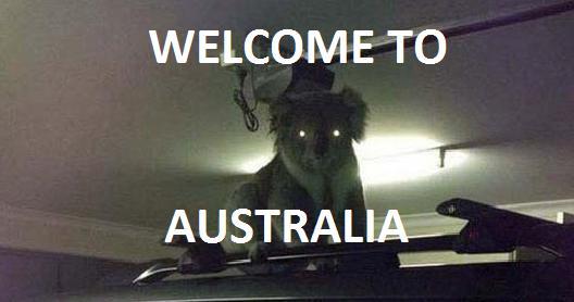 Austrālija ir vienīgā vieta... Autors: ORGAZMO 024817% nedzirdētu faktu paka!
