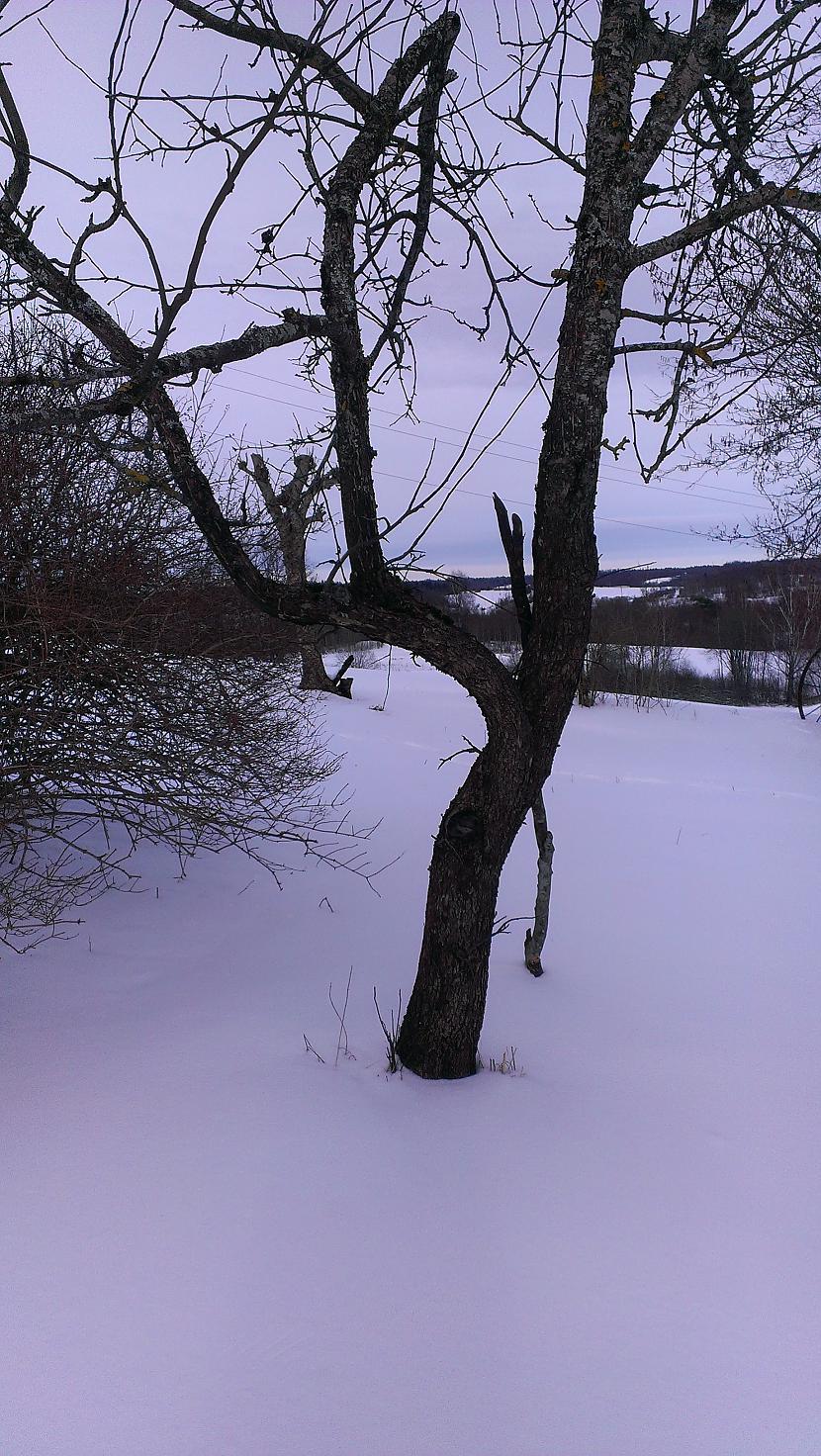Autors: tala12 Ziemas atmiņās