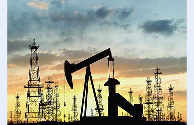 Skolā mums mācīja ka nafta un... Autors: MONTANNA No kā radās nafta?
