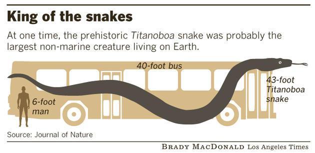Čūskas salīdzinājums ar 12... Autors: BodyBoard Titanoboa - Radījums no Elles