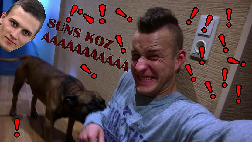 Autors: zeminem2 Mans suns man kož