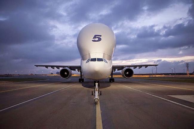 nbspAirbus Beluga jeb... Autors: Mao Meow Airbus Beluga - lidmašīnu pasaules valis