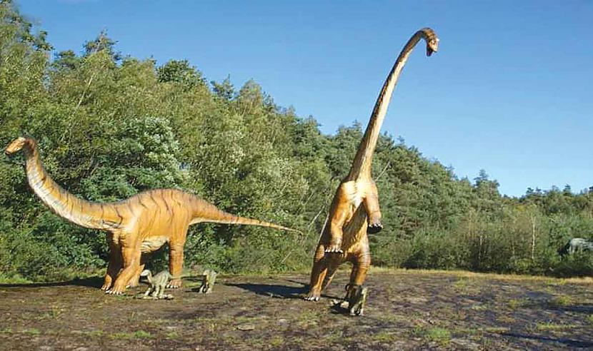 Vairums dinozauru bija... Autors: Kapteinis Cerība Fakti par Dinozauriem 2. daļa.