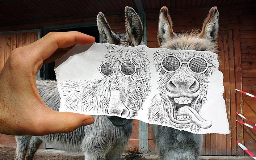 Autors: Kolch Hey!!! He, hey!