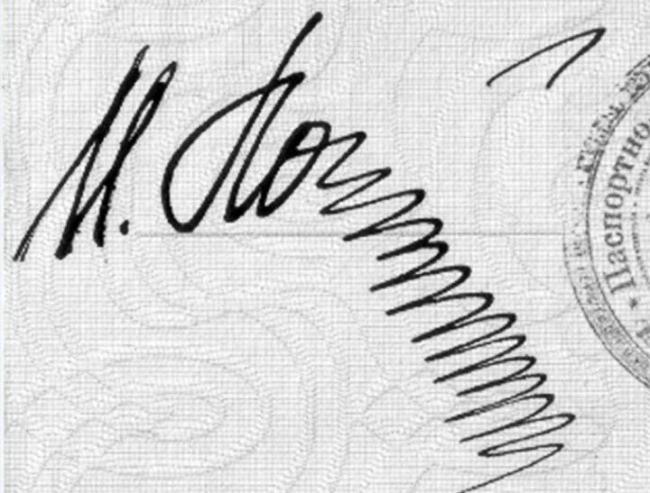 Autors: matilde Apskati 23 dīvainākos parakstus, kas ir atrodami cilvēku pasēs!
