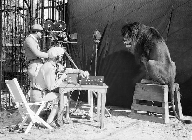 Lauva no kinostudijas MGM... Autors: ProudBe 25 Bildes, kas liks tev paskatīties uz dzīvi.