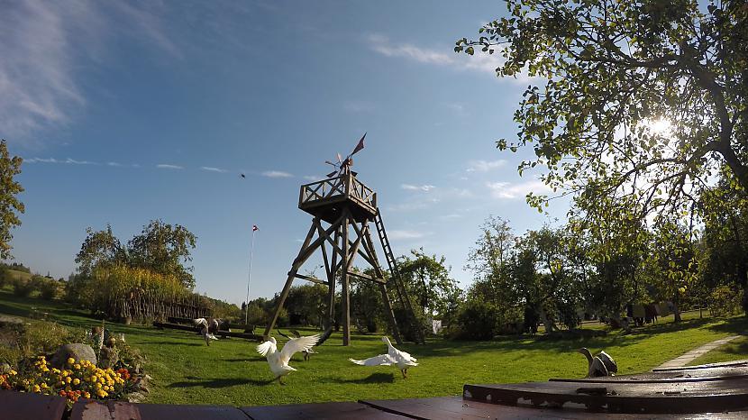 Autors: awesomeTVprodoction Mūsu Latvijas lauki
