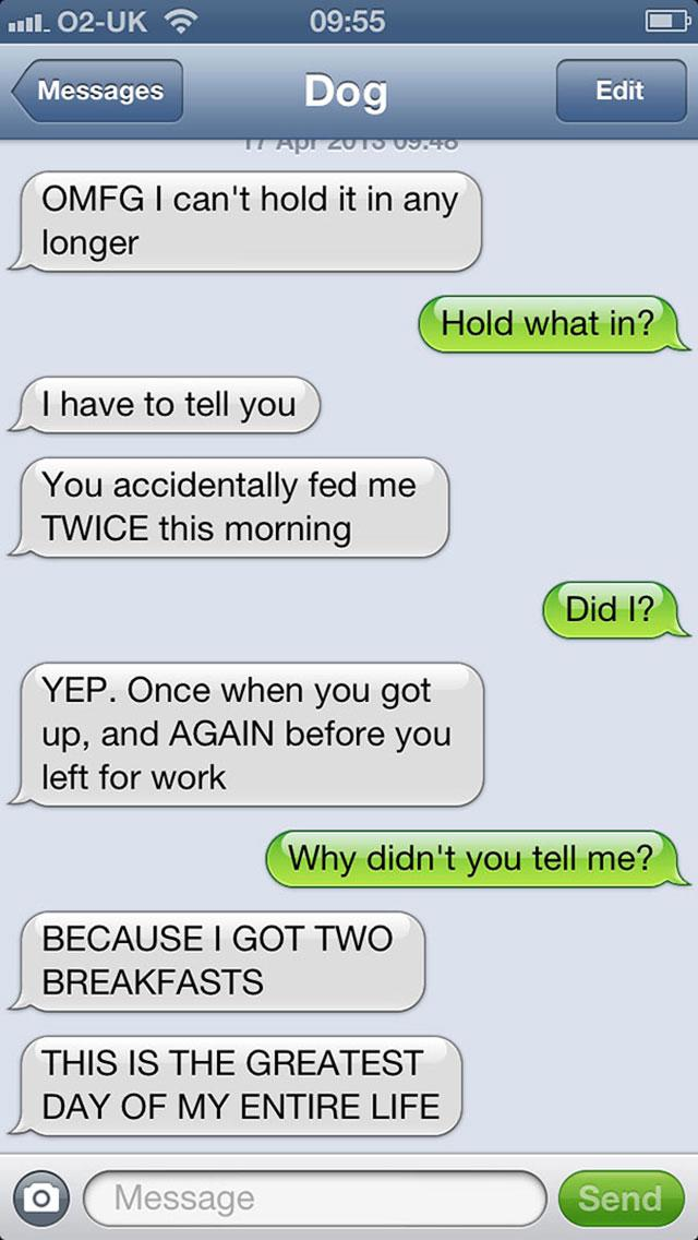 Autors: elipsys Kā būtu, ja suņi mācētu rakstīt SMS!