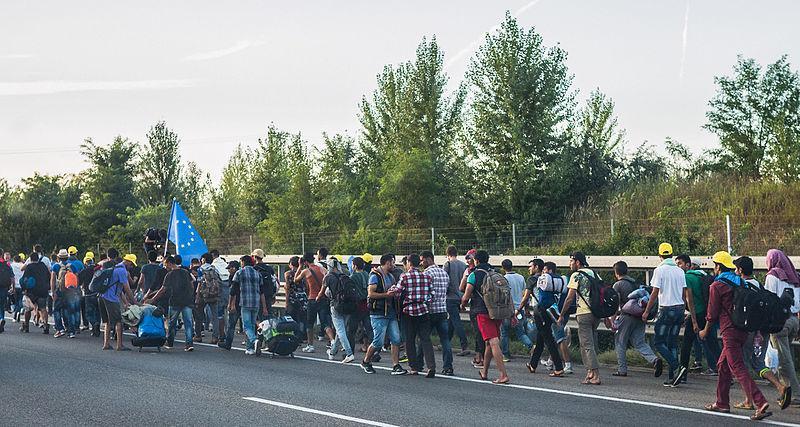 Pārsvarā visi ir ekonomiskie... Autors: WhatDoesTheFoxSay Bēgļi - Eiropas pastāvēšanas beigas?