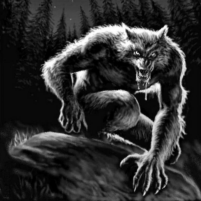 Vai vilkači ir izmiruscaroni... Autors: LordsX Vilkaču zeme Latvija