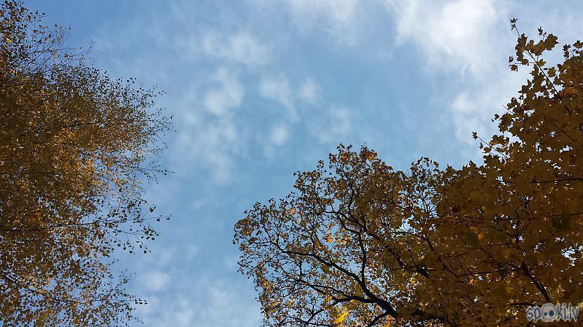 Autors: WhatDoesTheFoxSay Zelta rudens Siguldā.