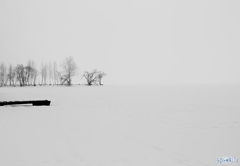 Autors: dalaipanna Fotogrāfijas