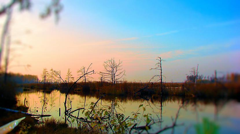 Ķemeru purvs Autors: M4R3X Pazudušās un atrastās
