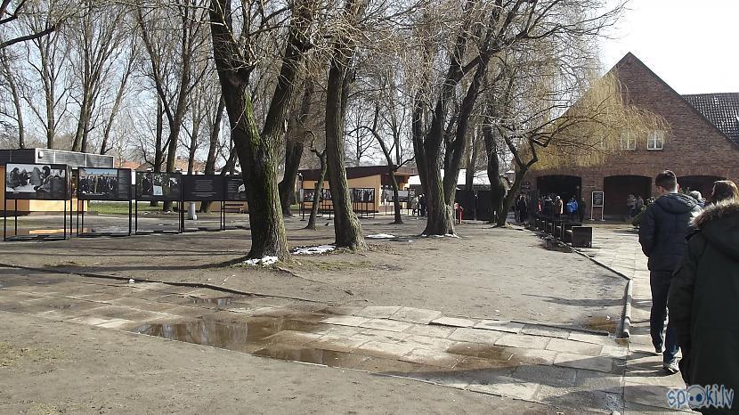 Auscaronvice Tagad ne tik... Autors: Fosilija Es tur biju, es to redzēju - Aušvices koncentrācijas nometne Birkenau #1