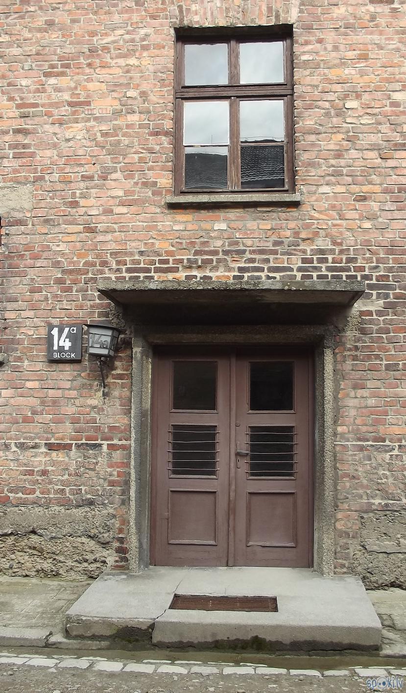 Autors: Fosilija Es tur biju, es to redzēju - Aušvices koncentrācijas nometne Birkenau #1