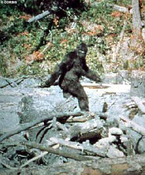 PatersonaGimlina filma1967gada... Autors: Testu vecis Mazāk redzēti foto, kas šokēja pasauli