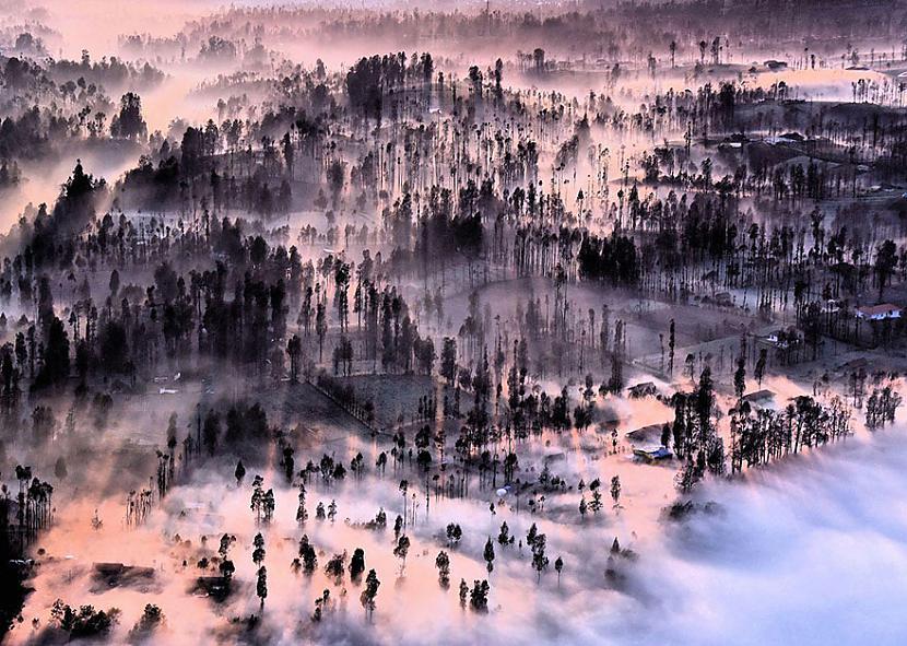 Indonēzija Autors: matilde 2016.gada National Geographic Traveler foto konkursa labākie kadri (20+ attēli)