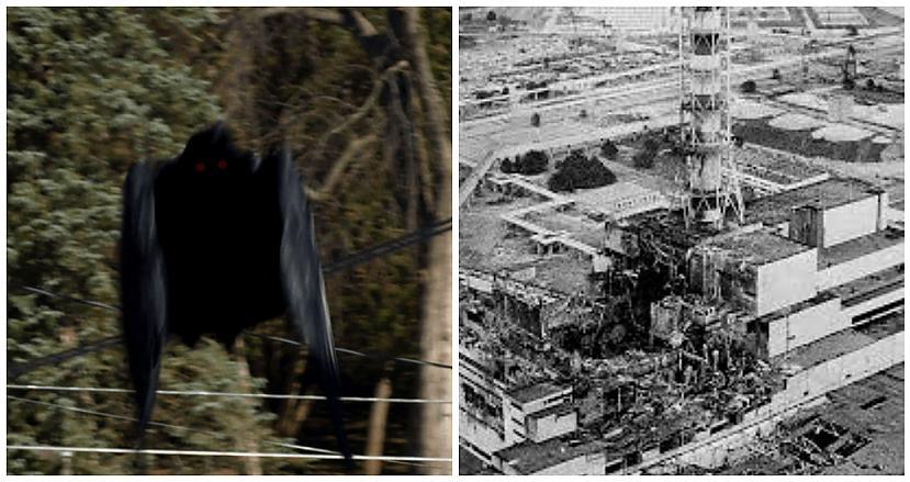 Černobiļas melnais putns... Autors: Plane Crash central Savādi fenomeni pirms un pēc traģiskām katastrofām