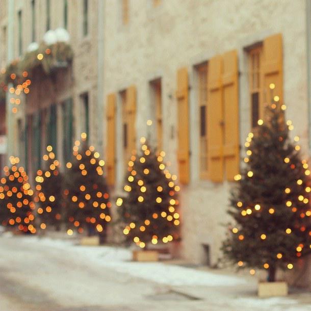 Autors: Fosilija Ziemas noskaņā #8