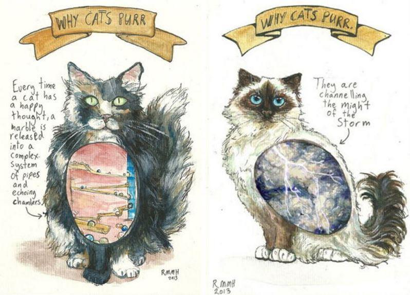 Daži kaķi murrās ja ir... Autors: Lestets Kāpēc kaķi murrā?