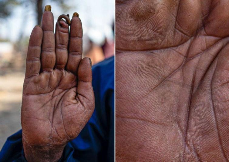 Garīdznieks Autors: matilde Fotogrāfs, kurš atrāda dažādu cilvēku profesijas caur viņu rokām