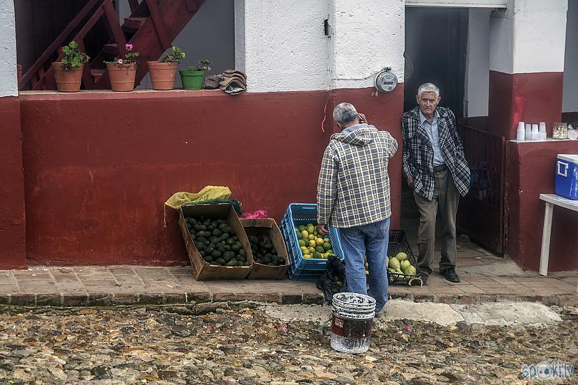 Autors: Alex Vikingo Foto no Meksikas ikdienas
