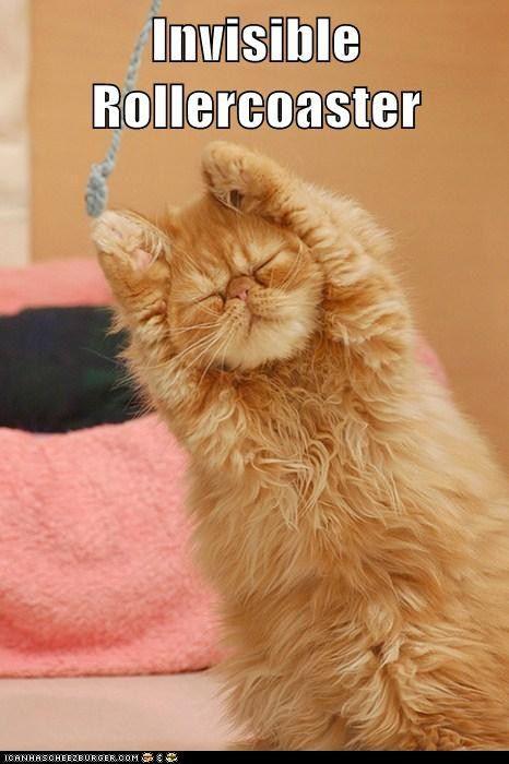 Autors: ProudBe Smieklīgie kaķi! 2