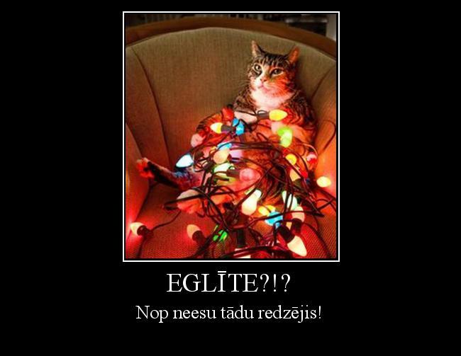 Autors: ProudBe Eglīte?!?