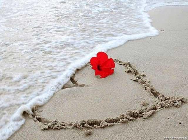 Dzīve ir īsa pasmaidiMani... Autors: Fosilija Pantiņi par mīlestību.