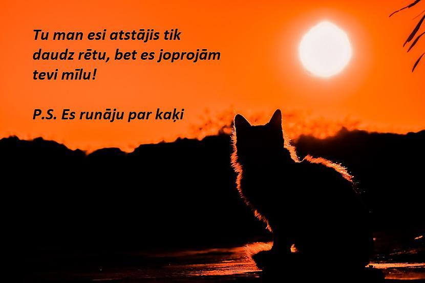 Foto Pixabay Autors: The Diāna Jociņi ceturtdienai!