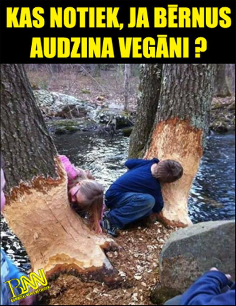 Autors: Bumbišķi News Network Vegāniem nav ne vainas!