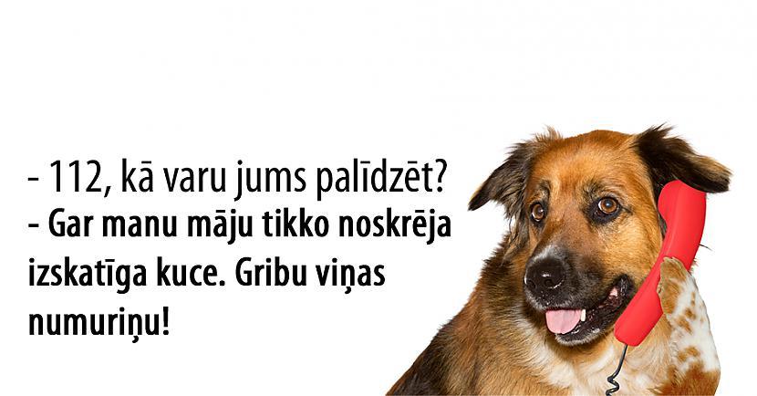 Autors: matilde Ja suņi varētu piezvanīt uz 112, par ko viņi sūdzētos?