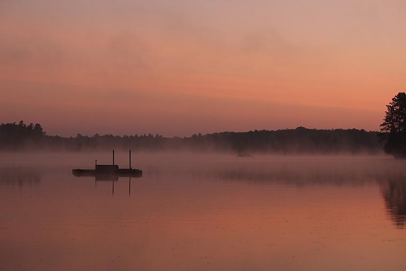 Foto PixabayVairāku gadu... Autors: Lestets Tomokas upes nāvējošā rozā migla
