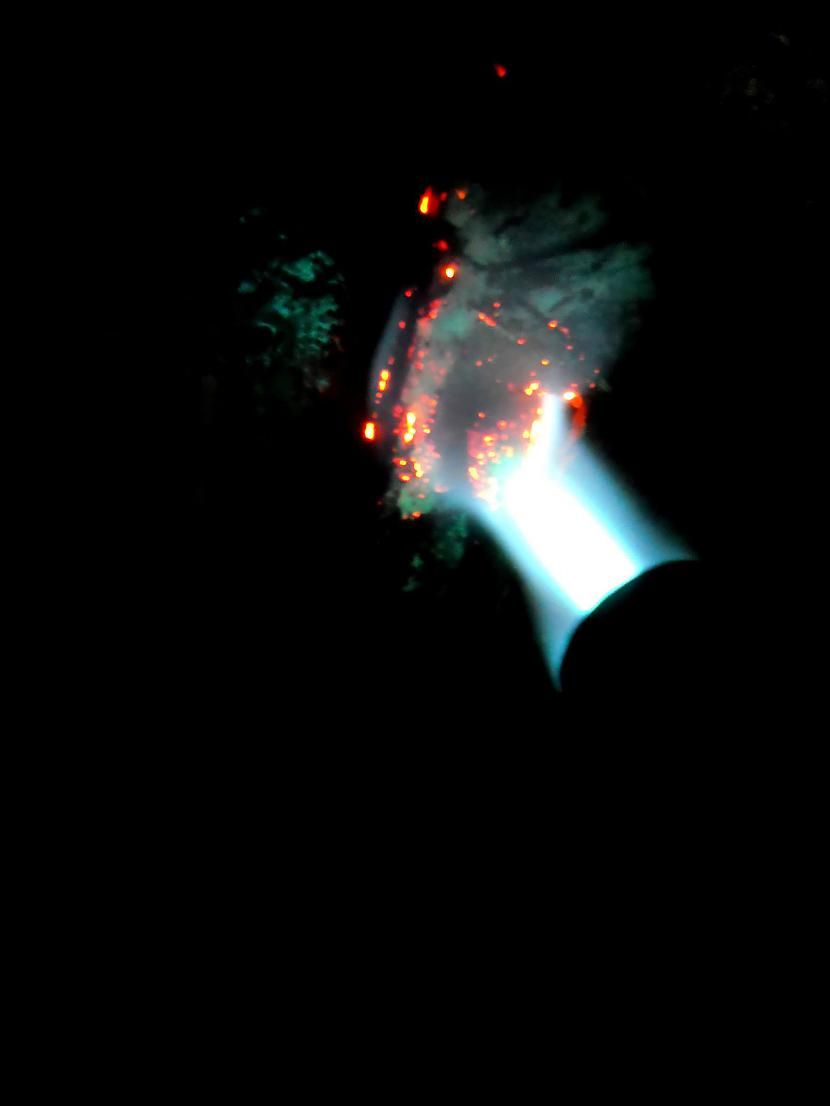 Te jau darbībā Tas sarkanais... Autors: default24 Biodīzeļa rūpnīca - 8. daļa (01.06.17)