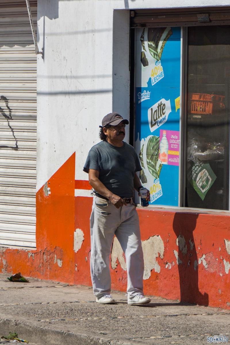 nez kur viņs dabuja aliņu ja... Autors: Alex Vikingo Meksikā sākusies lietus sezona