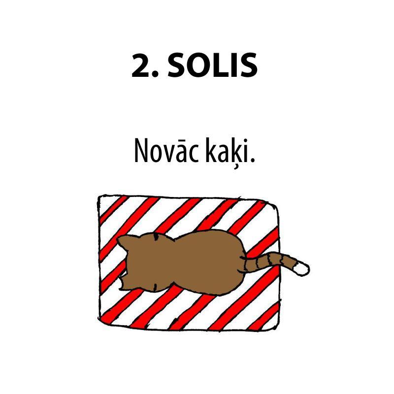 Autors: matilde Kā iesaiņot dāvanu, ja mājās ir kaķis?